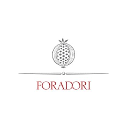 Immagine per il produttore Foradori